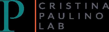 PAULINO lab